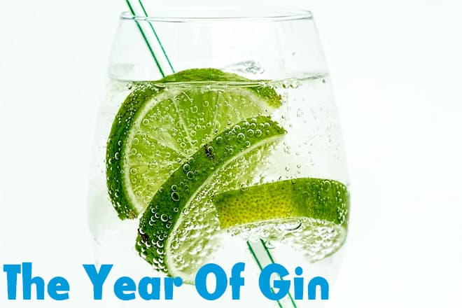 The Year Of Gin